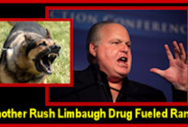 """The Reasons Why Rush Limbaugh & The Booing NASCAR Fans Really Hate Those """"Uppity Blacks"""" Like Michelle Obama!"""