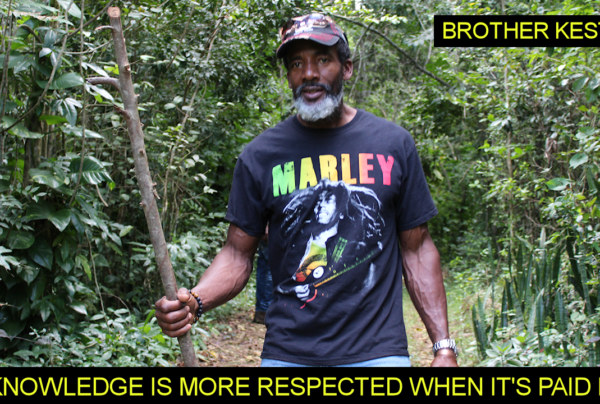 Knowledge Is More Respected When It's Paid For! – The LanceScurv Show