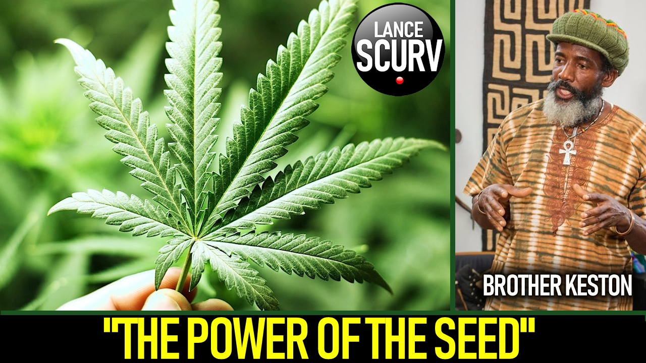 THE POWER OF THE SEED! - The LanceScurv Show