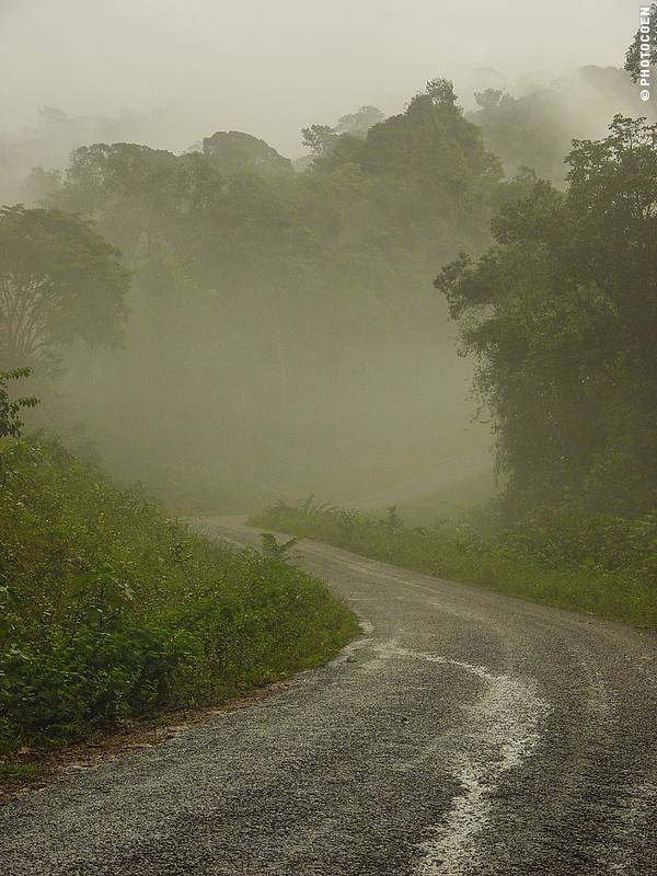 Driving from Cayenne to Kaw, French Guiana (©photocoen)