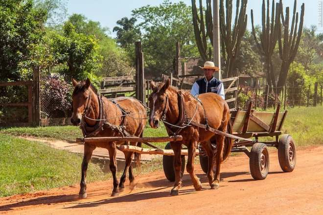 Mennonites in Paraguay (©photocoen)