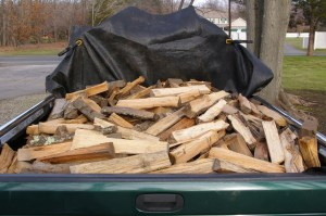 Newtown CT Firewood