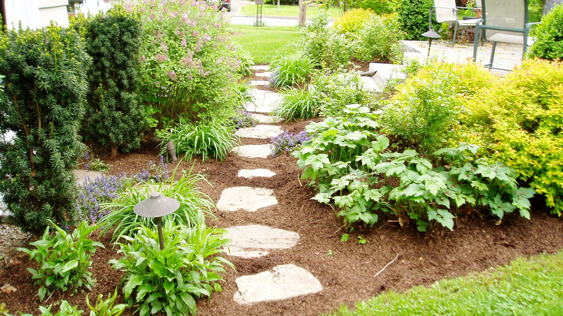 Stepping Stones Through Garden
