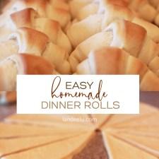 Easy Homemade Dinner Rolls | landeelu.com So yummy and hard to mess up! #dinnerrolls #rollrecipe #homemaderolls
