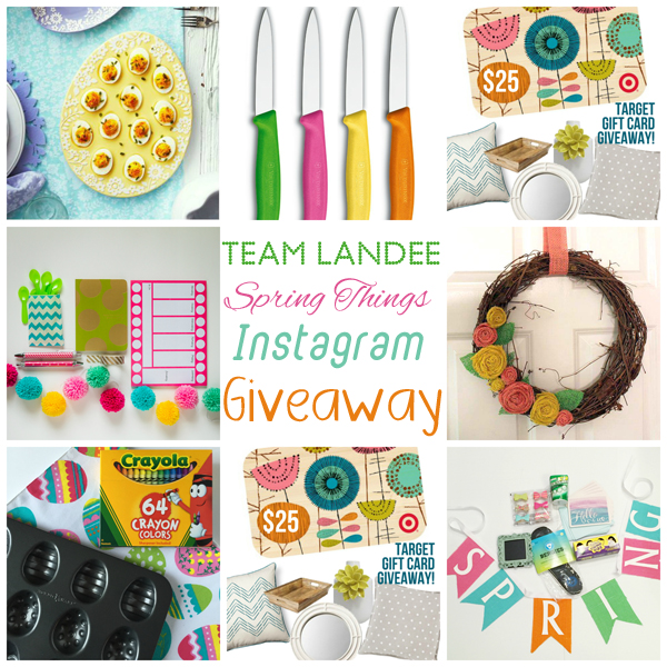 Team Landee Giveaway Items
