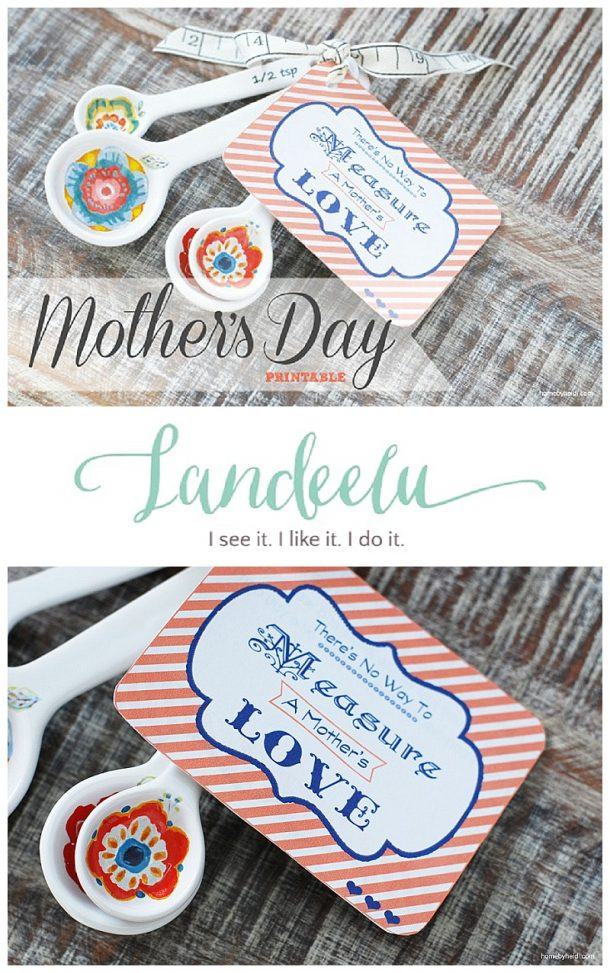 "Mother's Day Gift DIY Idea and FREE Printable - ""There is no way to MEASURE a MOTHER'S LOVE"" - attach to measuring spoons or cups! Such a thoughtful Mother's Day gift!"