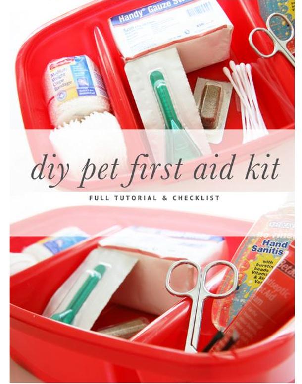 Pretty Fluffy DIY pet first aid kit
