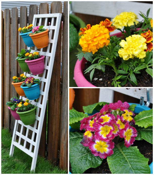 Food Family Finds vertical-flower-garden-with-primroses roundup for landeelu dot com