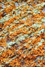 Spiralized Sweet Potato Fries with Avocado-Dill Sauce l Steph in Thyme for Landeelu.com