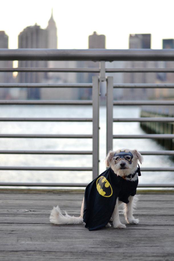Batman NO SEW Costume