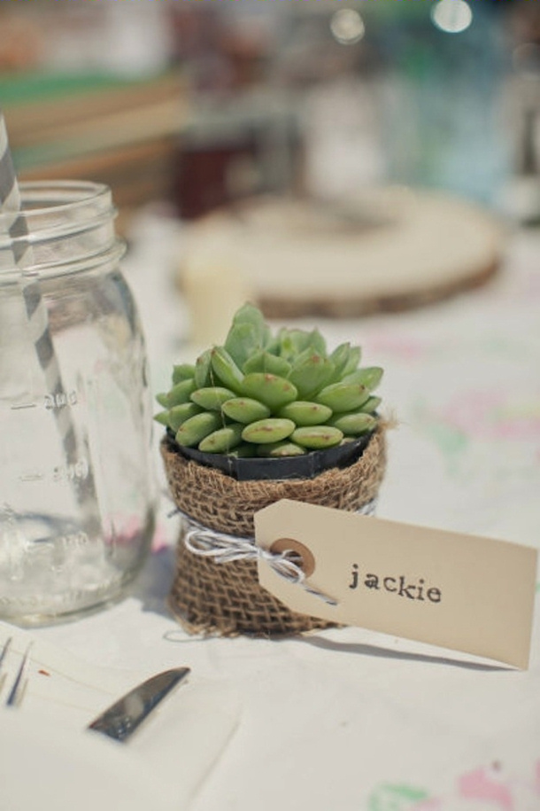 Succulant Place Card Setting and Guest Gift via Style My Pretty