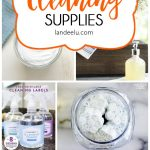 I love the idea of homemade cleaners... non-toxic, natural and less expensive.