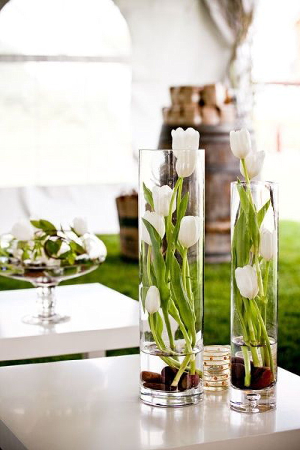 Tulips in bulbs in vases eHow