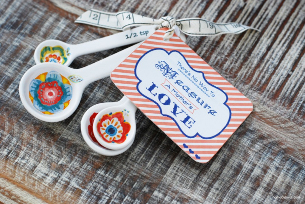 DIY gift ideas for Mothers Day - DIY Measuring Spoons with FREE printable gift tags No Way to Measure a Mothers Love via Landeelu