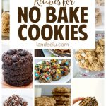 20+ No Bake Cookies Recipes