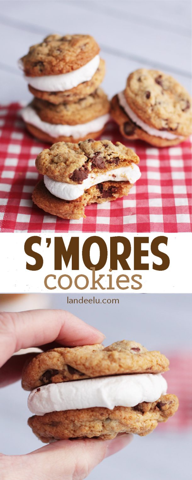 S'Mores Dessert Recipes - S'Mores Cookies Treats Recipe via Landeelu