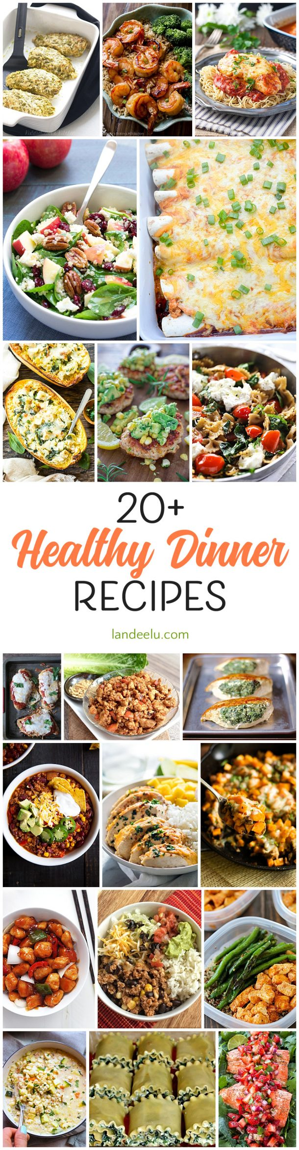 Over 20 healthy dinner recipes to try ASAP! Some family favorites lightened up and some packed with nutrients... all delicious!