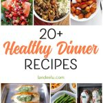 20+ Healthy Dinner Recipes For Your Family