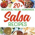 20+ Delicious Salsa Recipes You Will Love!