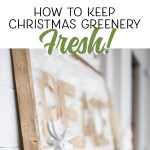 Great tips on how to keep Christmas greenery fresh for weeks!