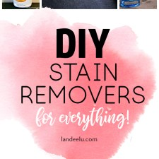 Amazing DIY Stain Removers For Anything!
