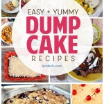 There's nothing easier than a dump cake! Just dump in the ingredients and bake! Perfectly moist and delicious every time. Check out these dump cake recipes that are perfect for birthday parties, backyard BBQs and any special occasion! Basically the perfect dessert! #dessertrecipe #dumpcake #cakerecipe #easycakerecipe #birthdaycake #birthdayparty #dessertidea