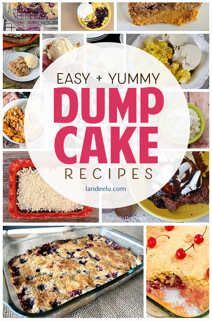 There's nothing easier than a dump cake! Just dump in the ingredients and bake! Perfectly moist and delicious every time. Perfect for birthday parties, backyard BBQs and any special occasion! Basically the perfect dessert! #dessertrecipe #dumpcake #cakerecipe #easycakerecipe #birthdaycake #birthdayparty #dessertidea