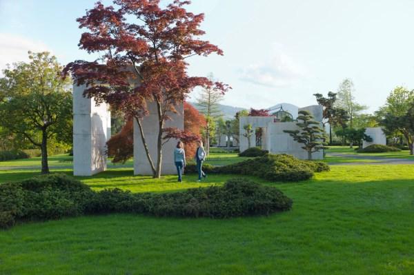 tree museum enzo enea landscape