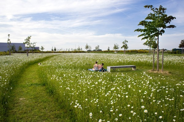 mont-evrin park urbicus landscape