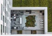 Public-plaza-and-coorporate-roof-garden-landscape ...