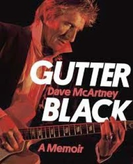 gutter black cover