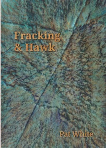 white_fracking_and_hawk