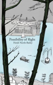 possibility_of_flight_north-bailey