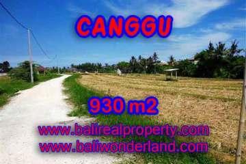 Property in Bali for sale, Fantastic view in Canggu Pererenan – TJCG146