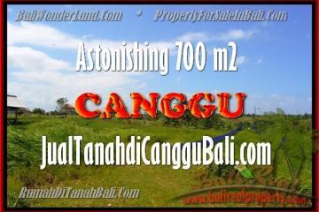 Beautiful LAND FOR SALE IN Canggu Kayutulang BALI TJCG155