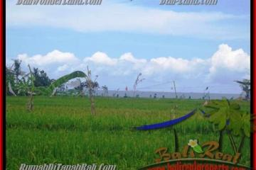 2.000 m2 LAND FOR SALE IN CANGGU TJCG140