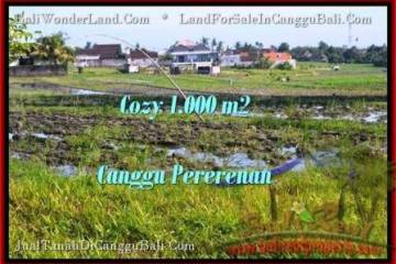 Exotic 1,000 m2 LAND IN CANGGU FOR SALE TJCG177