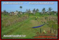 Beautiful 500 m2 LAND SALE IN CANGGU TJCG179