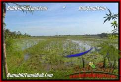 FOR SALE Affordable PROPERTY 1,000 m2 LAND IN CANGGU TJCG180