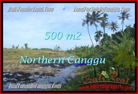 Beautiful PROPERTY CANGGU BALI 500 m2 LAND FOR SALE TJCG181