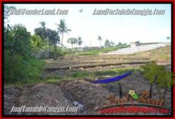 FOR SALE Exotic LAND IN Canggu Pererenan TJCG181