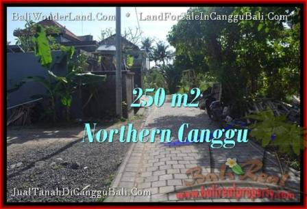 Magnificent PROPERTY 250 m2 LAND IN CANGGU BALI FOR SALE TJCG182
