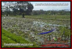 FOR SALE Exotic LAND IN Canggu Pererenan TJCG183