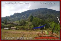Beautiful PROPERTY 20,000 m2 LAND SALE IN Pancasari TJTB163