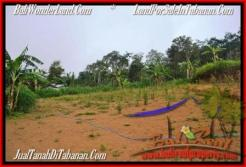 Exotic PROPERTY 12,700 m2 LAND IN Sukasada FOR SALE TJTB167