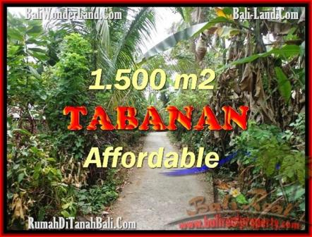 Beautiful PROPERTY 3,000 m2 LAND SALE IN Tabanan Selemadeg TJTB159