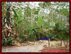 Beautiful LAND IN TABANAN FOR SALE TJTB159
