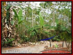 Beautiful LAND IN TABANAN FOR SALE TJTB159