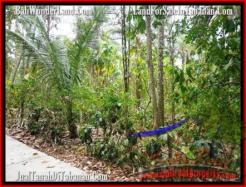 Magnificent LAND FOR SALE IN TABANAN TJTB160
