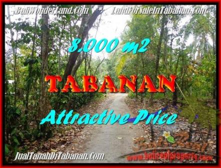 Exotic PROPERTY 8,000 m2 LAND IN Tabanan Selemadeg FOR SALE TJTB161